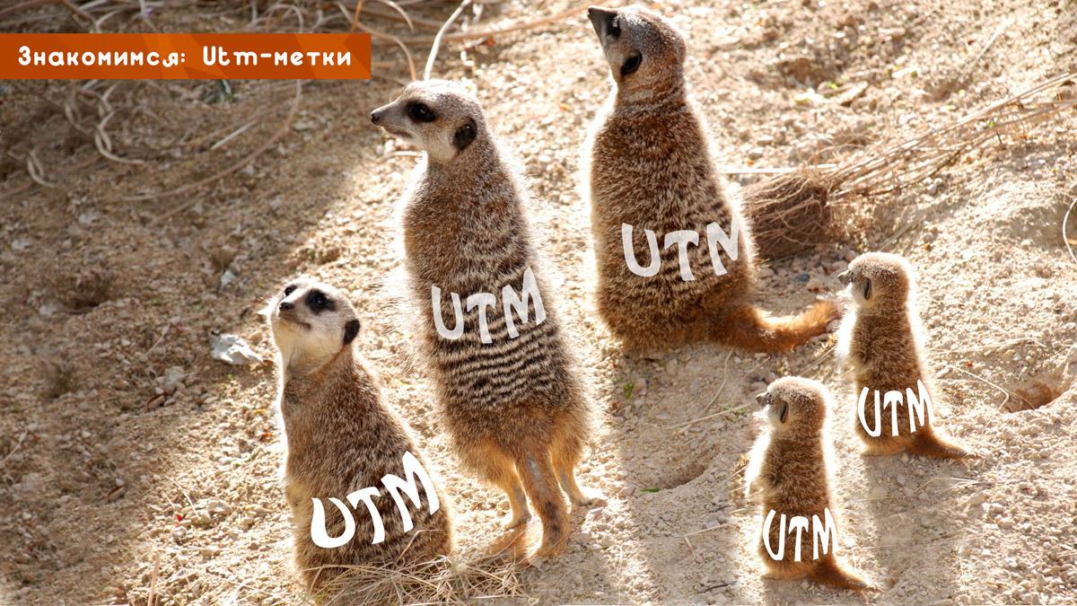 Знакомимся: utm-метки